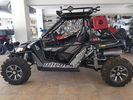 Arctic Cat  WILDCAT 1000 LTD