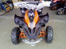 Dirt Motos  Renegade 50cc