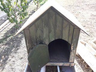 3c120b9173b6 Χύμα Shop Σπίτι - Κήπος - Κατοικίδια - Ζώα Κατοικίδια Ζώα Σκύλοι ...